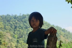Племя длинных шей