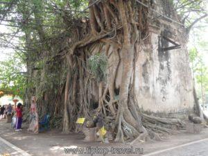 Ват Банг Кунг